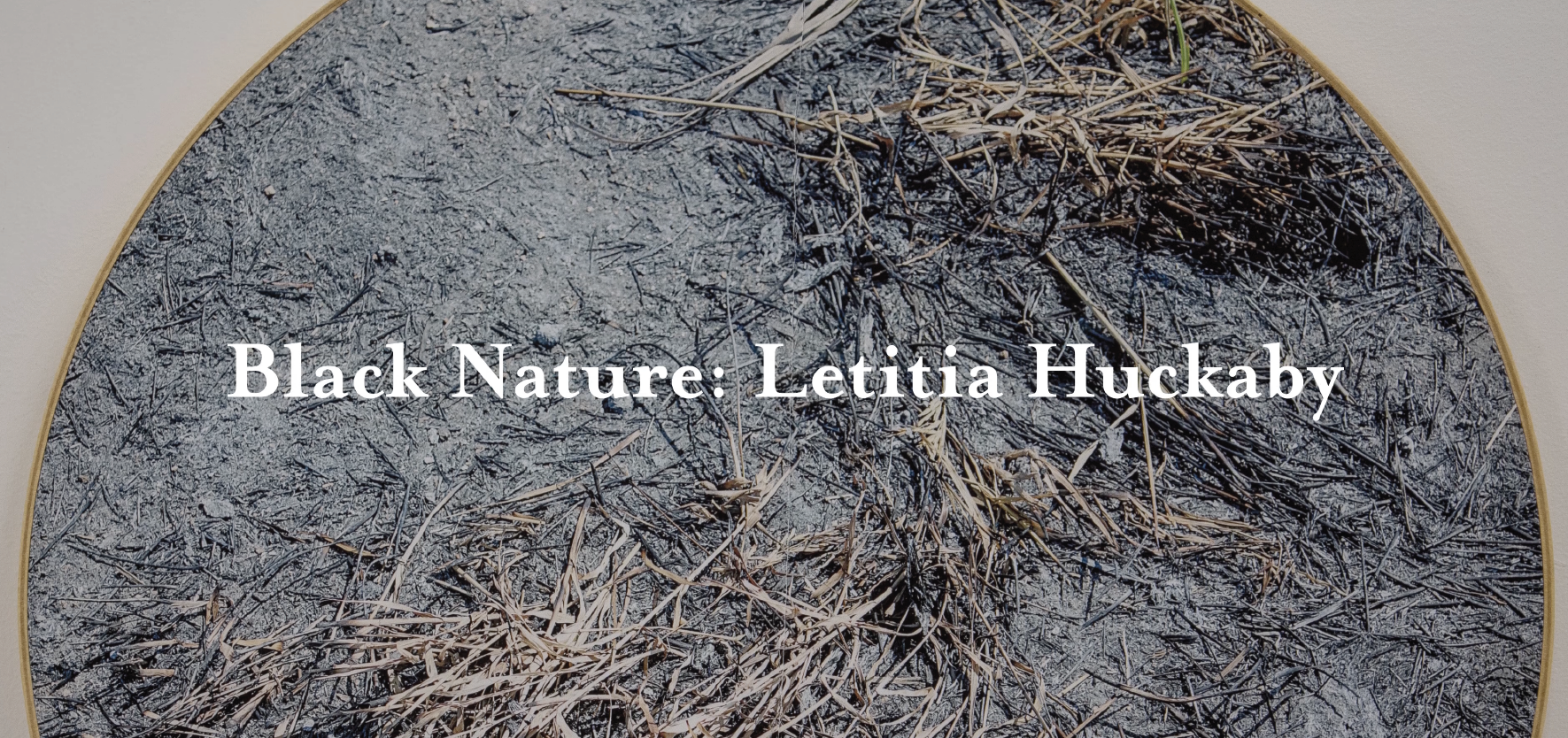 "Virtual Tour of ""Black Nature: Letitia Huckaby"""